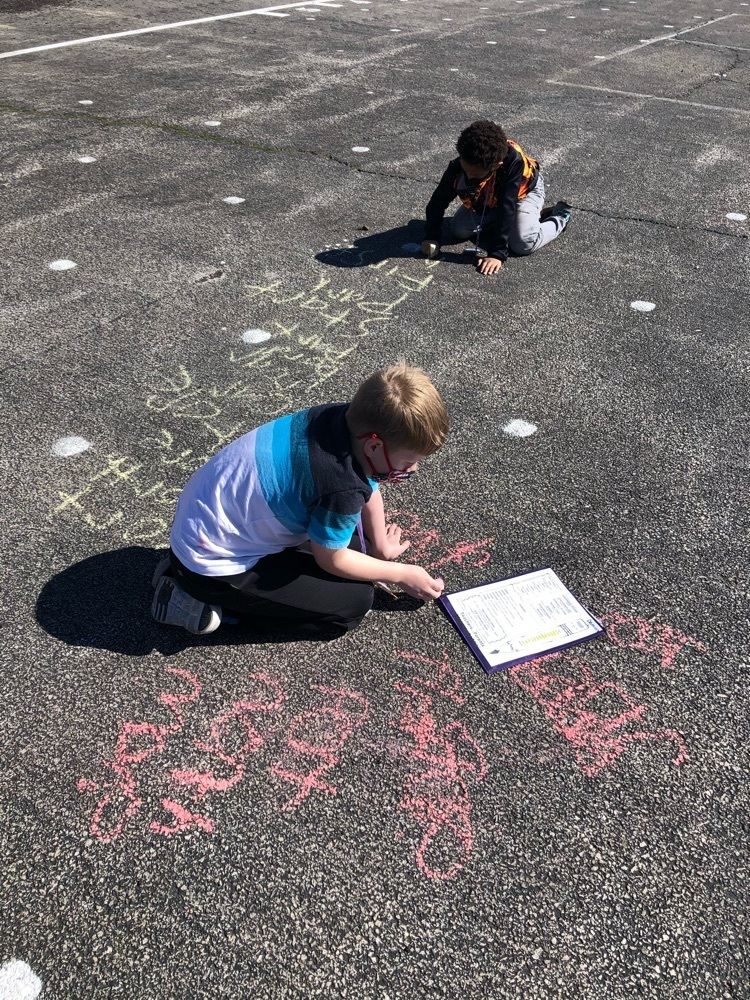 Mrs. Amann's class practicing spelling words in chalk