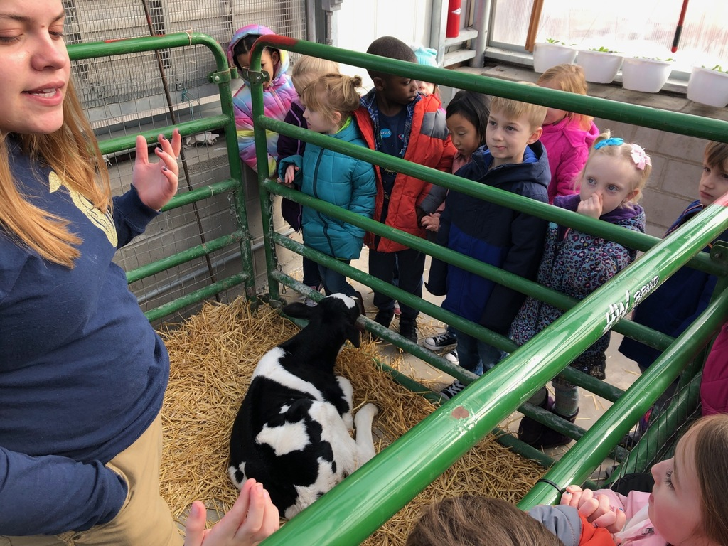 Scott Elementary Kindergartners had a great time learning about farm animals at the annual Mascoutah High School FFA petting zoo. #19EveryStudent
