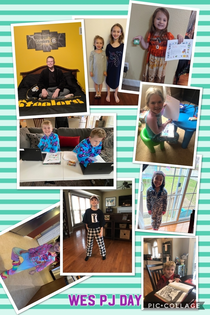 Pj day collage 2